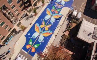 Asphault art in Asheville NC
